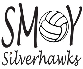 SMOY Volleyball Car Decal