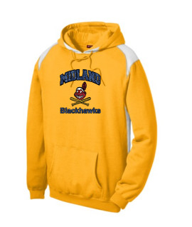 Sport-Tek Gold Pullover Hooded Sweatshirt with Contrast Color Glitter Curved Blackhawk with Blue Glitter