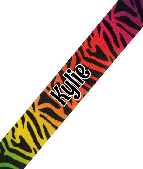 Rainbow Zebra Print